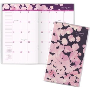 AT-A-GLANCE® 2017 - 2018 Rosalita 2-Year Monthly Pocket Planner (156-021_17) - AT-A-GLANCE