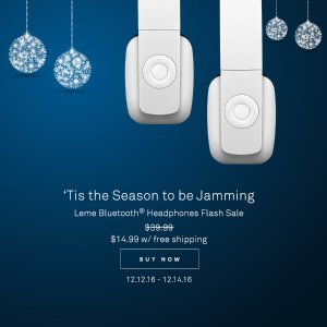 Leme EB20 Bluetooth Headphones
