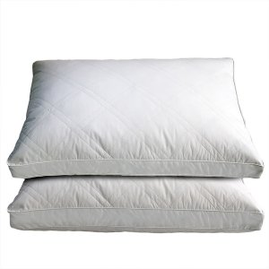 White Goose Feather and Down Pillows (Set of 2) - 17241442 - Overstock.com Shopping - Great Deals on Blue Ridge Home Fashions Down Pillows