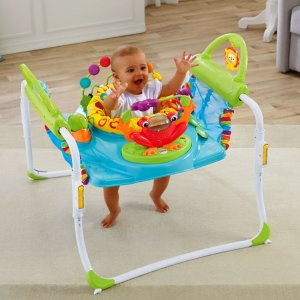 Fisher-Price® First Steps Jumperoo™ | BFB21 | Fisher Price