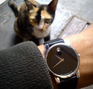 MOVADO Museum Black Dial Black Leather Strap Men's Watch 2100002