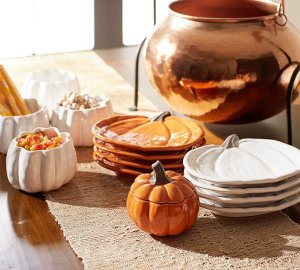 20% Off Entire Order Friends & Family Event Including Clearance @ Pottery Barn