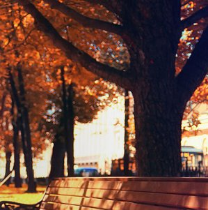 Special Deals!Find Autumn Favorites on Expedia