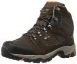 Hi-Tec Men's Borah Peak I Waterproof Hiking Boot | Amazon.com