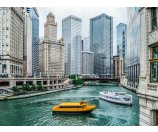 3 Day Tour to Chicago, Galena,Amish Village, Mill City Museum, Mall of America, Gingseng Factory, Cow Farm etc.