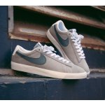NIKE SB BLAZER LOW GT MEN'S SKATEBOARDING SHOE @ Nike Store
