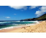 5 Day【-$100】Hawaii+Pearl Harbor+Waikiki Beach