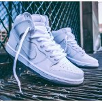 NIKE SB DUNK HIGH PRO 'PICNIC' MEN'S SKATEBOARDING SHOE @ Nike Store