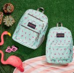 Up to $50 Off Backpacks and more sale