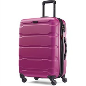 Samsonite Omni Hardside Luggage 24