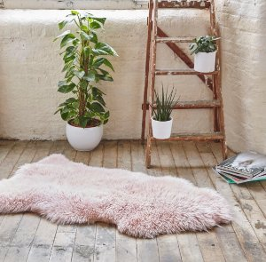 £35 (reg £120)on Royal Dream Sheepskin Rugs @ The Hut