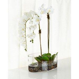 NDI White & Green Faux-Floral Arrangement