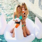 $32.5 Swan Float Graceful Pool Toy and Lounger