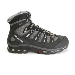 Salomon Men's Quest 4D 2 GTX Boot - at Moosejaw.com