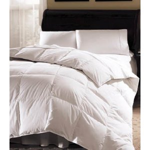 Aurora 233 Thread Count White Goose Down Comforter - 918569 - Overstock.com Shopping - Great Deals on Blue Ridge Home Fashions Down Comforters