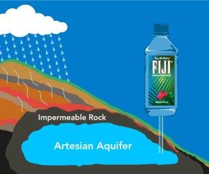 FIJI Natural Artesian Water, 16.9 Ounce Bottles (Pack of 24)