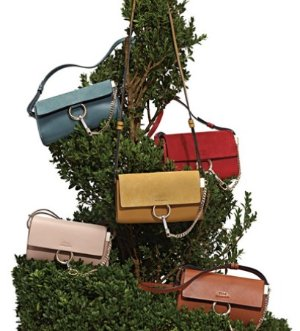 Up to $1000 Gift Cardwith Regular Priced Chloe Handbags @ Bergdorf Goodman Dealmoon Chinese New Year Exclusive