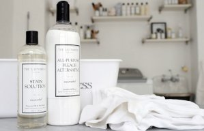 $15.95 The Laundress Stain Solution, Unscented, 16 oz