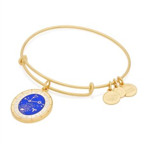 Aries Celestial Wheel Charm Bangle | ALEX AND ANI