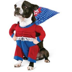 Superhero Dog Costume | Superhero Costumes for Dogs | Petco
