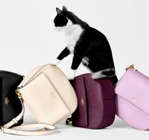 New Arrival The Cameron Street Collection @ kate spade