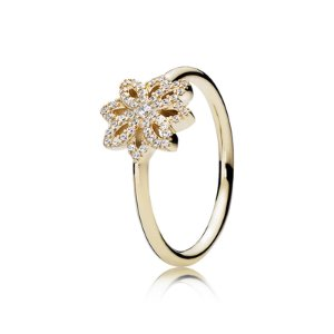 Lace Botanique, Clear CZ & 14K Gold | PANDORA Jewelry US