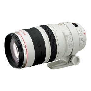Canon EF 100-400mm f/4.5-5.6L IS USM Refurbished | Canon Online Store