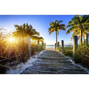 【佛罗里达全览】超值度假7天:迈阿密+沼泽+奥兰多主题乐园