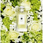 with Any Jo Malone Purchase @ Saks Fifth Avenue