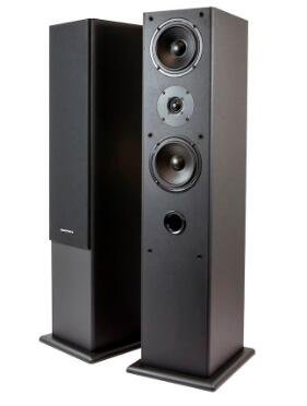 Premium Dual 5.25 Inch 2-Way Tower Speakers (Pair) - Black Finish