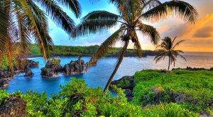 希尔顿积分小贴士免费享受阳光沙滩夏威夷