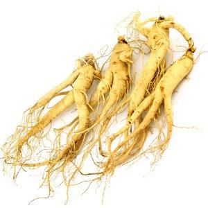 WOHO Fresh American Ginseng Extra Jumbo 8oz (3-5 Roots)