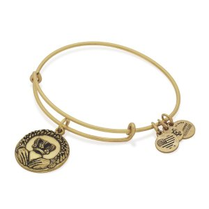 Claddagh Charm Bangle | ALEX AND ANI