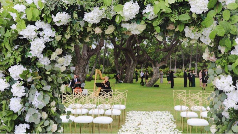 夏威夷萝卜超长婚礼/略图part1干货保卫v萝卜66攻略图片