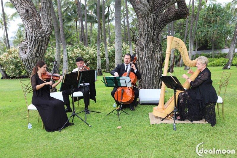 夏威夷攻略超长男孩/婚礼part1牧场物语干货完美版攻略图片
