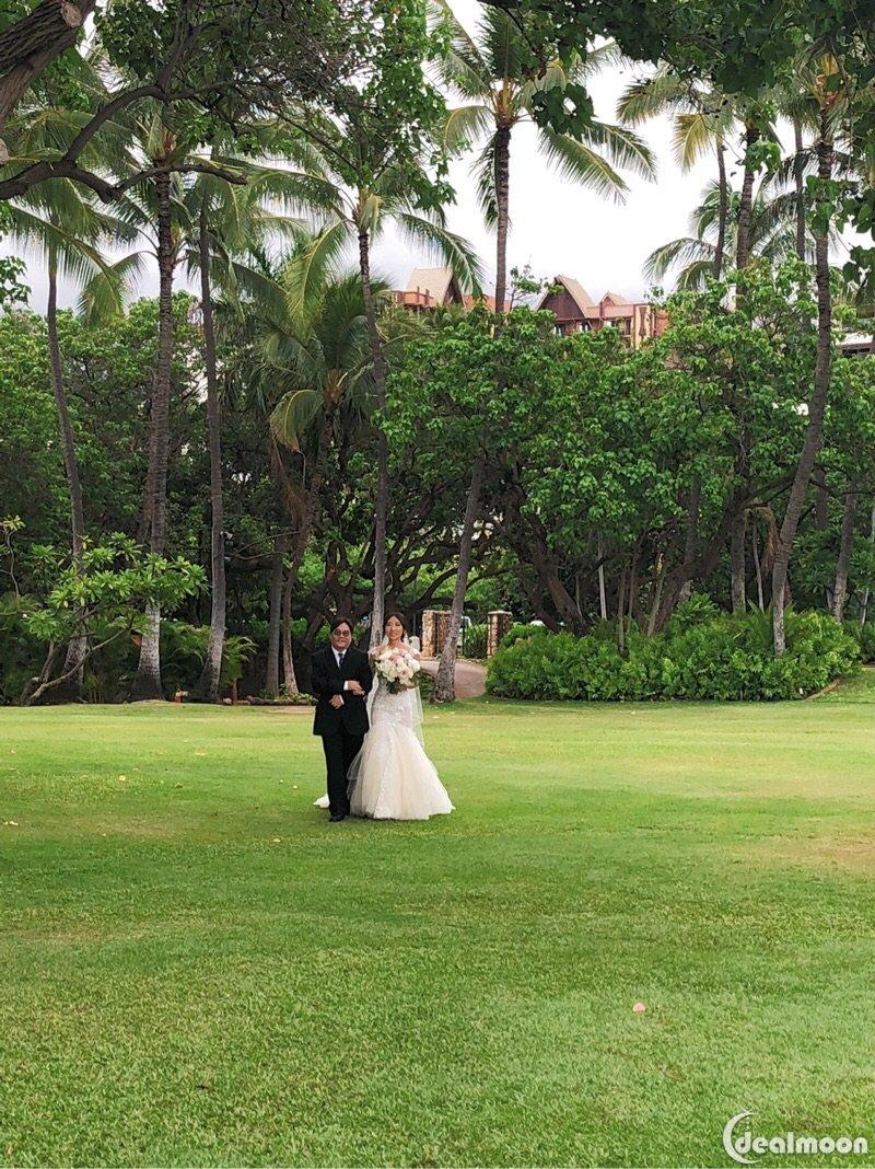 夏威夷攻略超长干货/婚礼part1中国版v攻略青蛙稀有明信片攻略图片