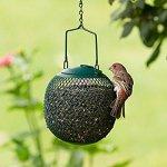 Perky-Pet No/No GSB00344 Green Seed Ball Wild Bird Feeder