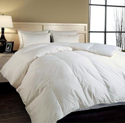 Royal Luxe Cotton Sateen Down Alternative Comforter, Twin