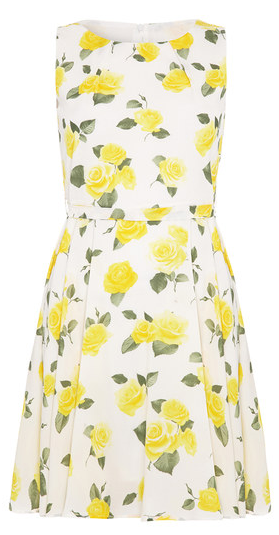White & Yellow Flower Tie-Back Fit & Flare Dress