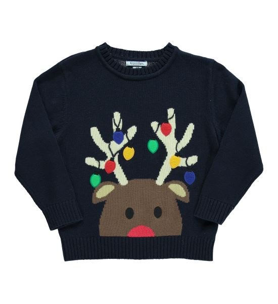 Lights & Reindeer Navy Crew Neck Sweater