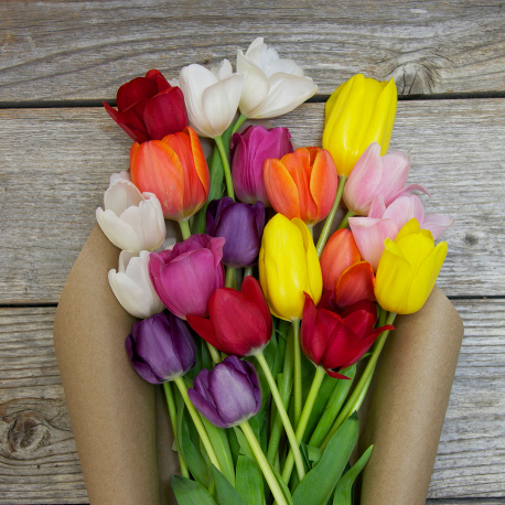 Just Make It Awesome | A Mixed Tulip Flower Bouquet
