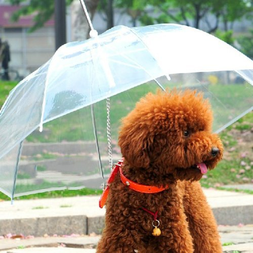 Lesypet Pet Umbrella Dog Umbrellar With Leash, Fits 23