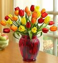 $34.9930-Stem Autumn Tulip Bouquet with Red Glass Vase
