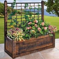 Flower Box With Trellis
