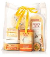 Burt's Bees Fall Grab Bag (Over $50 Value)