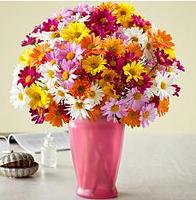 15% offMother's Day Flowers & Gifts @ ProFlowers