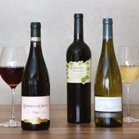 50% OffYour First Wine Club Shipment @ Global Wine Cellars