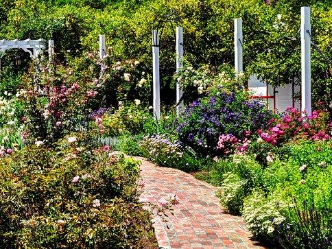 $37 Los Angeles County Arboretum & Botanic Garden Family Membership
