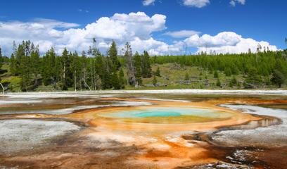 38% Off + Buy 2 Get 1 Free + Double Points Yellowstone National Park Travel Packages Sale @ Usitrip.com (Dealmoon Exclusive)