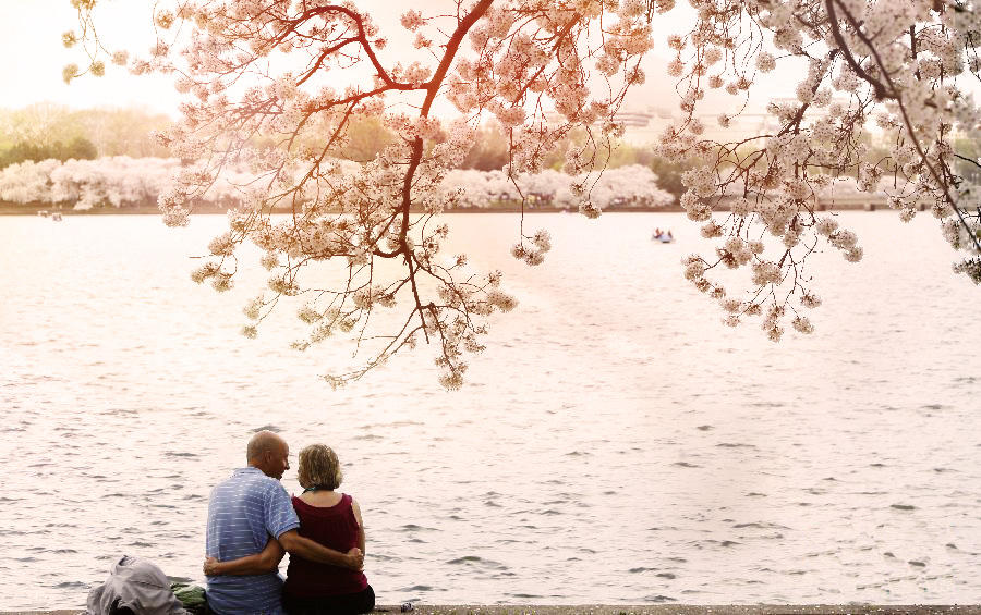 From $88/person Romantic Blossom-viewing 3 Day Tour @iTuxing